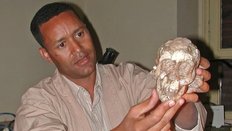 This 3.3-Million-Year-Old Hominin Toddler Was Kind of Like Us