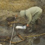 Viking Grave in Denmark Holds Remains of Mother and Son