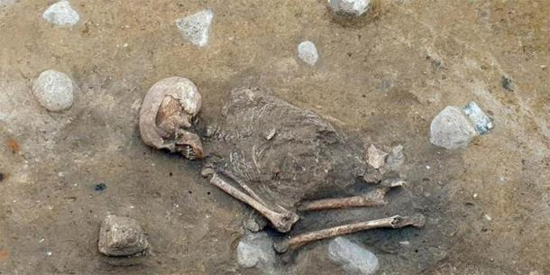 'Lady Of Bietikow' May Have Died Of A Tooth Infection 5,000 Years Ago