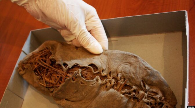 World's oldest leather shoe which is 1,000 years older than the Great Pyramid.