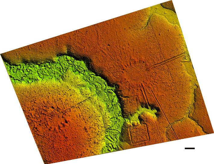 Lidar Reveals Network of Ancient Villages in Brazil's Rainforest