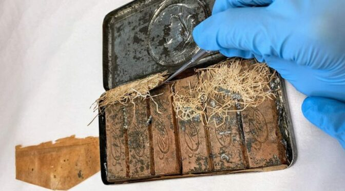 Chocolate uncovered by National Library 120 years past expiry date still almost good enough to eat