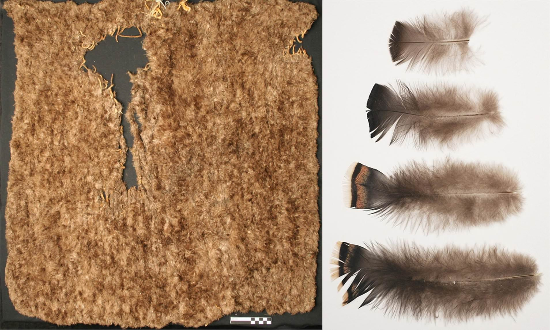 800-year-old Pueblo Indian blanket made out of 11,500 turkey feathers