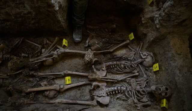 Women's mass grave sheds light on female victims of the Spanish Civil War