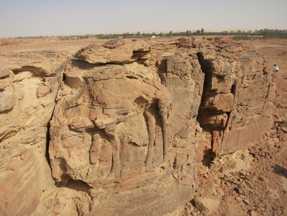 2,000-Year-Old Rock Carvings of Camels Discovered in Saudi Arabia