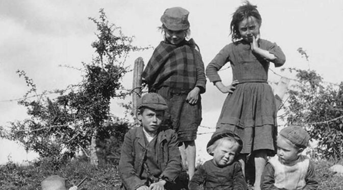 Dead bodies of 800 babies found in a septic tank at former Irish home for unwed mothers
