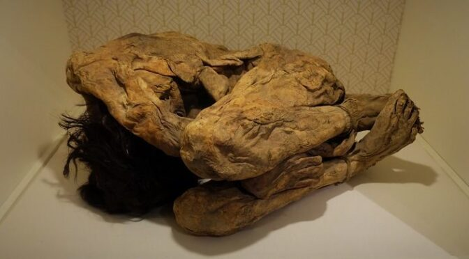 In 1980, while cleaning out her garage, a woman found the hidden mummies