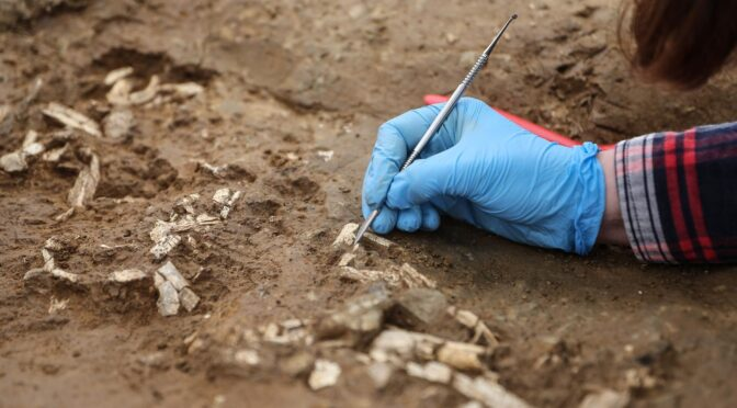 Early Bronze Age Burials Uncovered in Istanbul