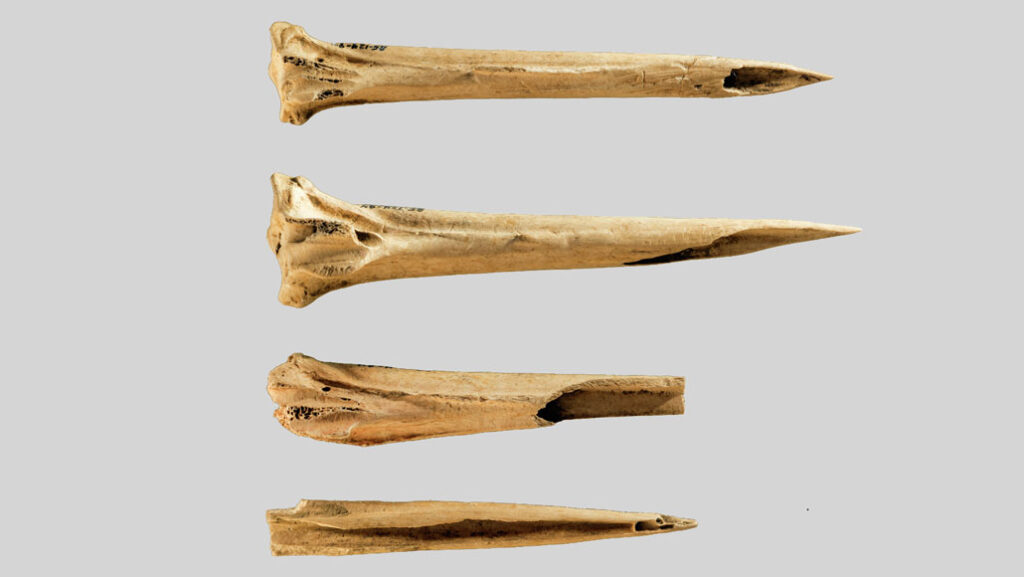 Tennessee's Tattooing Tools Dated to More Than 5,500 Years Ago