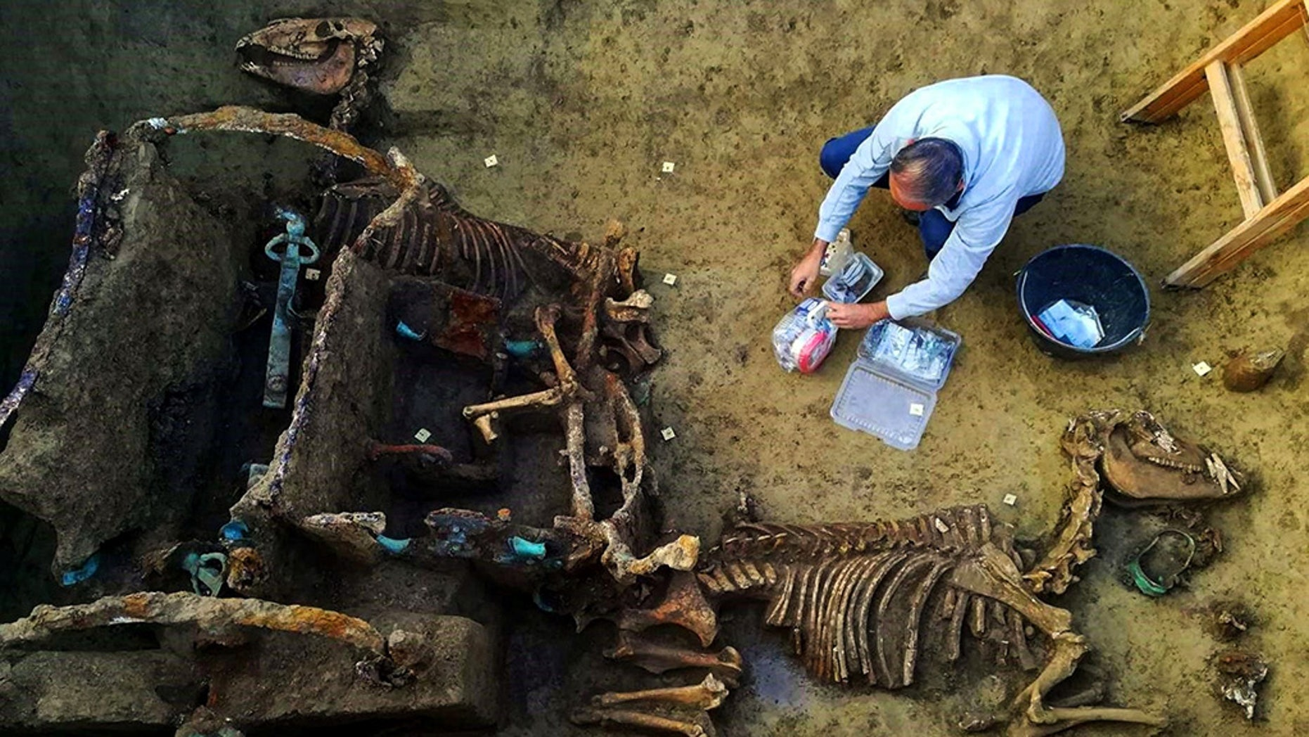 1,800-year-old Roman Chariot with horses found buried in Croatia