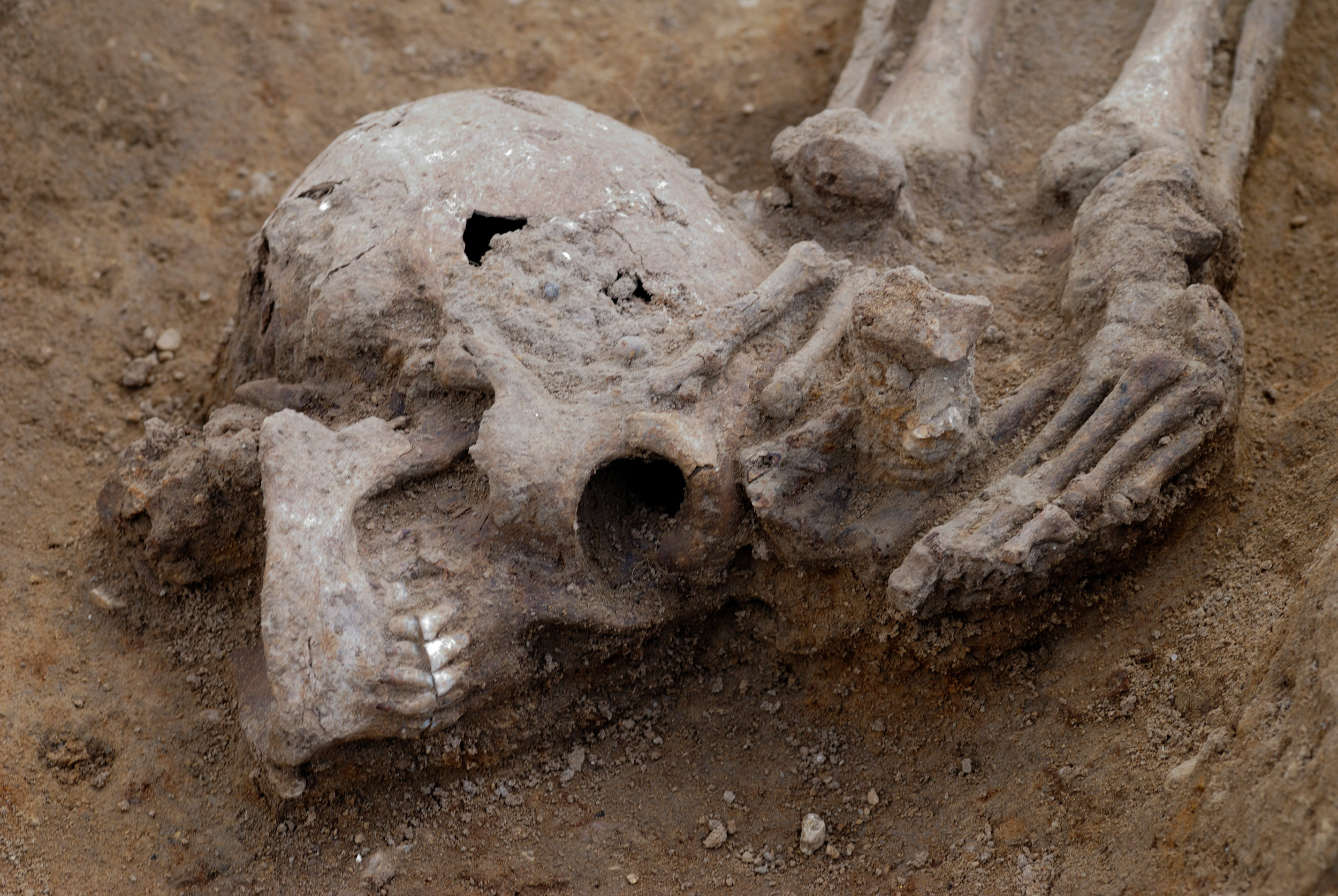 'Exceptionally high' number of decapitated bodies found at Roman burial site