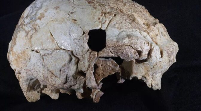 Is This 400,000-Year-Old Hominin the Great Grandpa of Neanderthals?