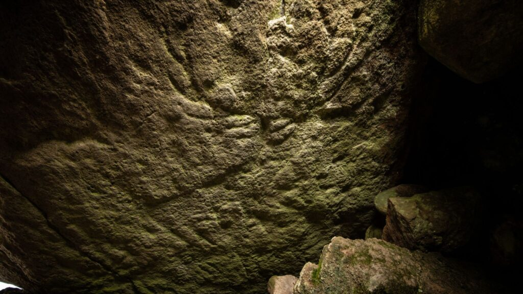 Prehistoric animal carvings found for the first time in Scotland