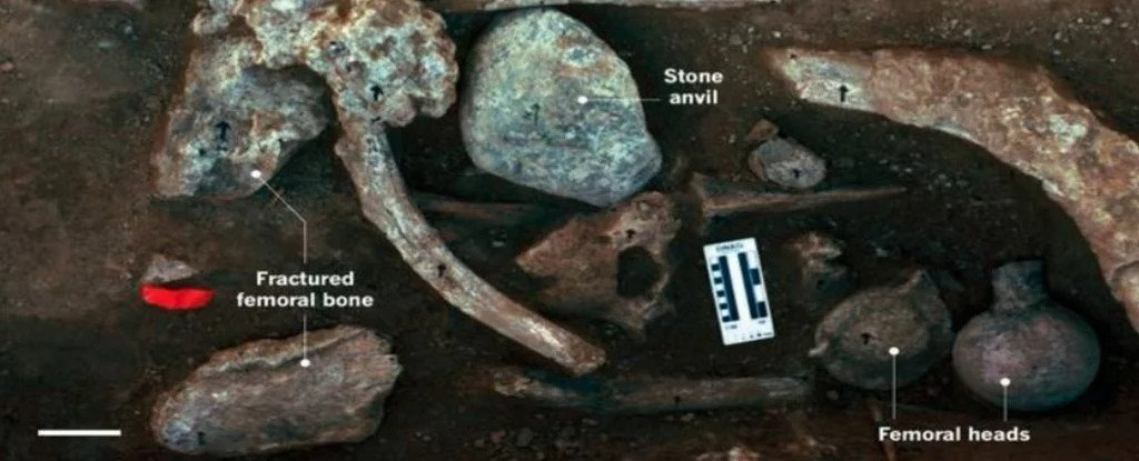 Humans Lived in North America 130,000 Years Ago, Study Claims