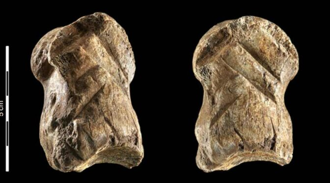 A 51,000-year-old engraved bone reveals Neanderthals' capacity for symbolic behaviour