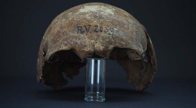 Earliest known bubonic plague strain found in a 5000-year-old skull
