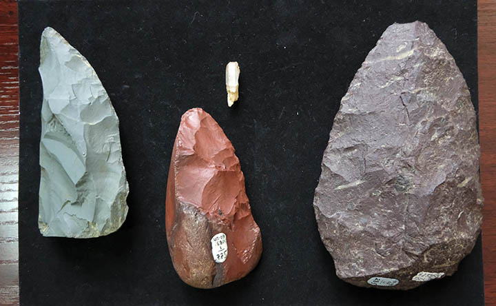 In a Siberian cave, a 60,000-year-old Neanderthal 'Swiss Army Knife' was discovered