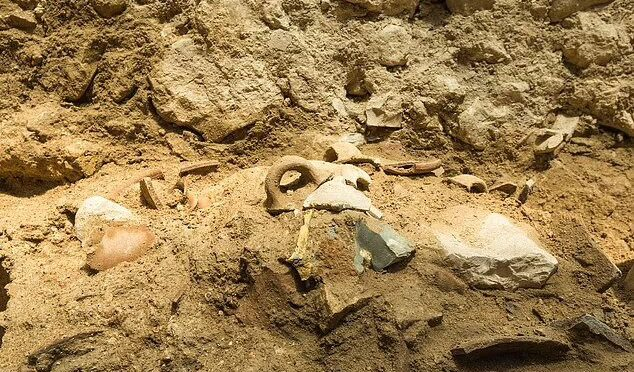 Archaeologists unearth 1st Jerusalem evidence of quake from Bible's Book of Amos
