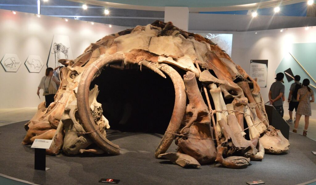 """Perhaps the earliest example of domed architecture, the mammoth huts found in Mezhyrich, Ukraine, could be up to 25,000 years old. """"Mammoth House"""" as shown at the """"Frozen Woolly Mammoth Yuka Exhibit"""" in Yokoyama, Japan in Summer 2013."""