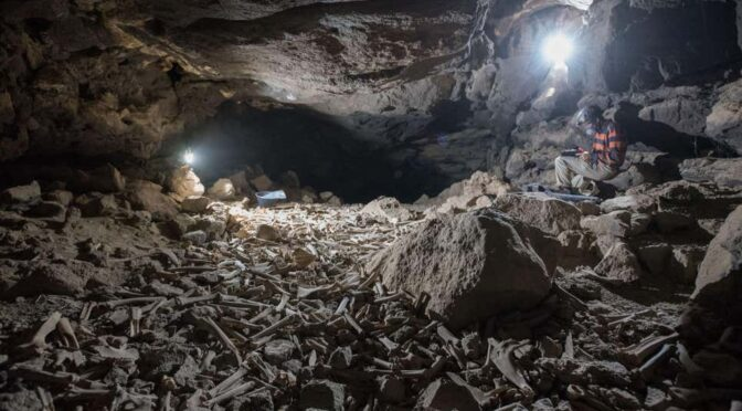 Thousands of human and animal bones hoarded by hyenas in lava tube system, Saudi Arabia