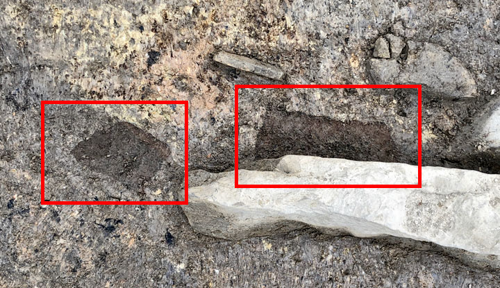 5,000-Year-Old Wood Uncovered at Scotland's Ness of Brodgar