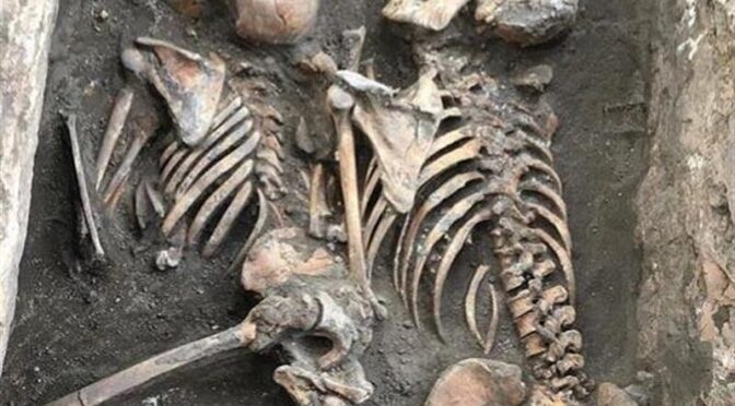 Study Estimates Life Expectancy in Bronze Age Turkey is 35 to 40 Years