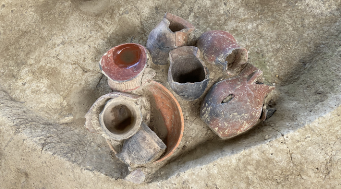 Traces of Beer Detected in 9,000-Year-Old Vessels in China