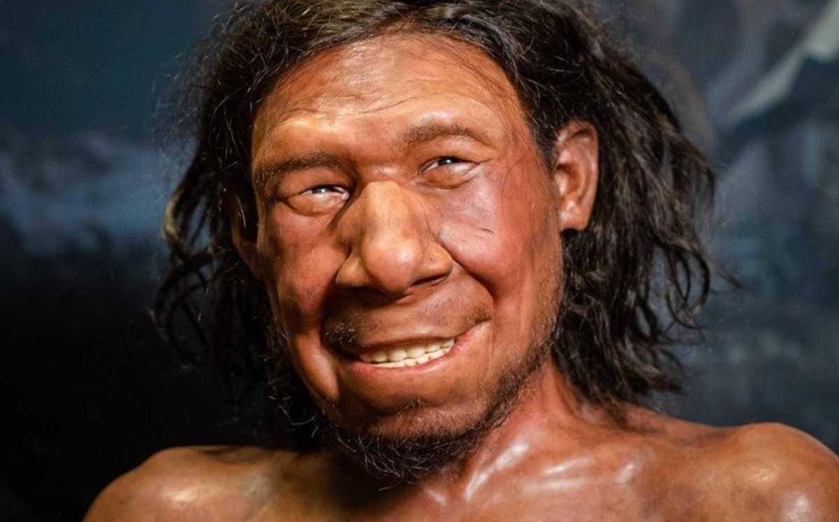 Netherlands: They rebuild the face of the first Dutch Neanderthal