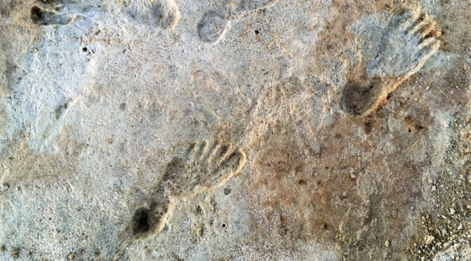 Fossil footprints show humans in North America more than 21,000 years ago