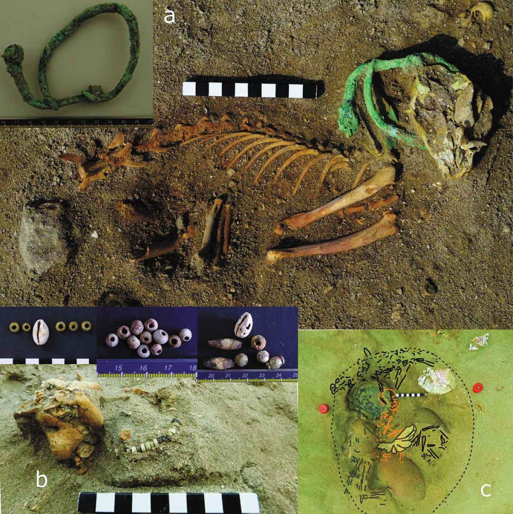 World's oldest 'pet cemetery' discovered in ancient Egypt