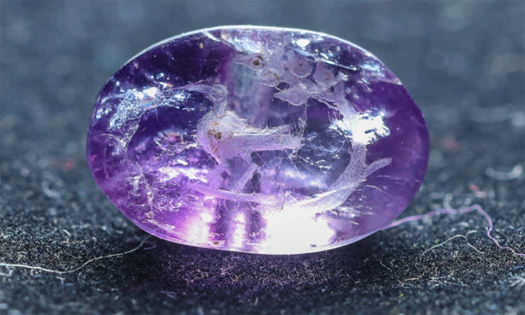 Amethyst Seal Showing Biblical Persimmon and Maybe an Ibis Found in Jerusalem