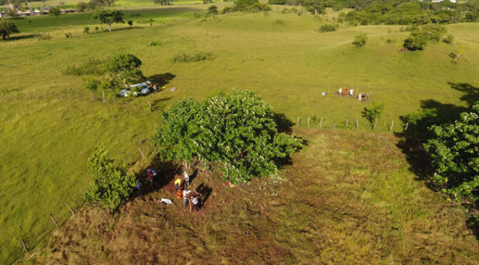 Archaeologists Map Nearly 500 Mesoamerican Sites and See Distinct Design Patterns