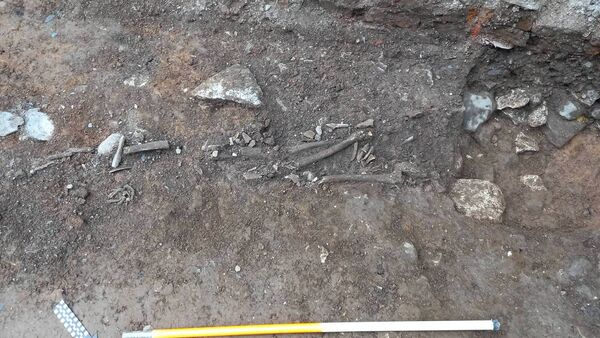 Human Remains Discovered Under 19th-Century Pub in Ireland