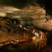 A 300 Million-Year-Old Shark Skull Was Discovered Inside Kentucky Cave