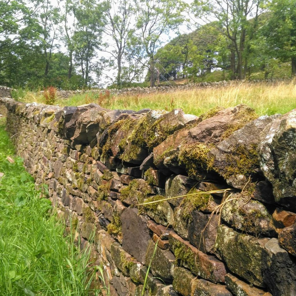 dry stone wall near Pendle from 2018