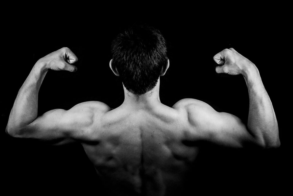 BCAA Benefits (Muscle Growth)