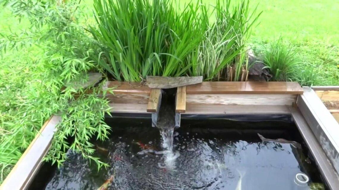 Garden Pond Ideas