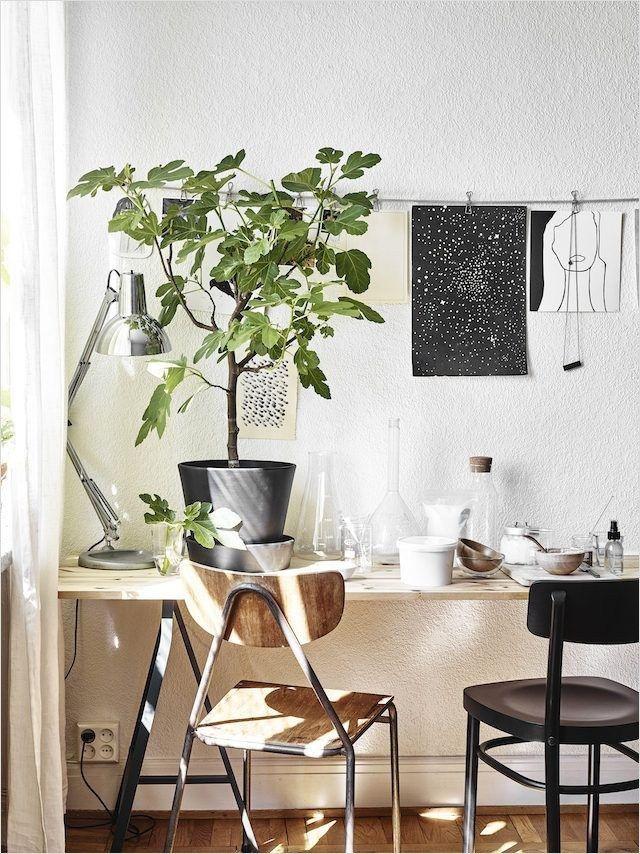 Scandinavian Lagom Ideas