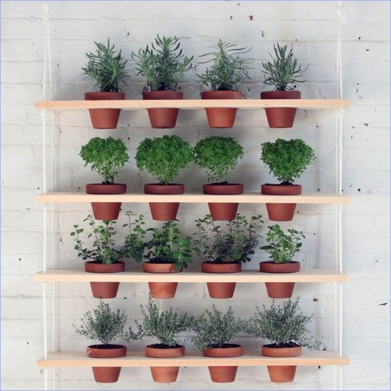 DIY Plant Shelves