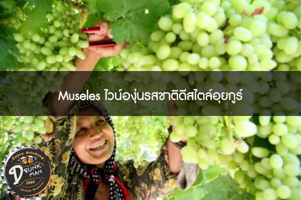 Museles ไวน์องุ่นรสชาติดีสไตล์อุยกูร์