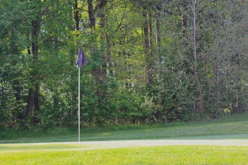 Golf Courses in Hertfordshire
