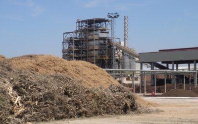 Gases renovables y bioproductos a partir de biomasa