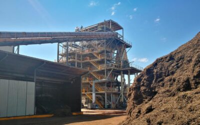 Curso de tecnologías de conversión de la biomasa residual