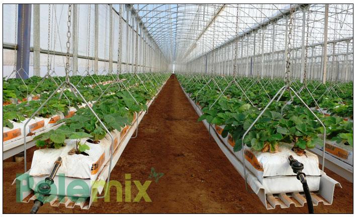 широкие-мешки-для-выращивания—клубники-с-подвесным-водостоком