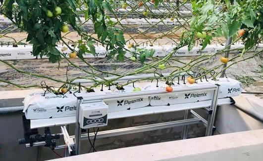 Bolsa de cultivo para drenaje
