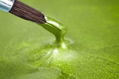 jungle green epodex betonboden versiegeln epoxy kunstharz