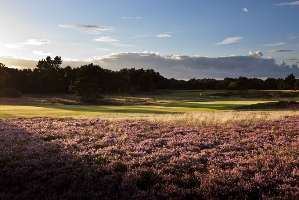 England Golf Tours