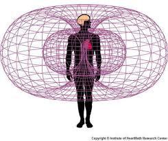 שדות אלקטרומגנטים סביב הלב