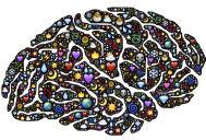 מוזיקה וגלי מוח