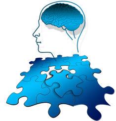 מיתוסים על המוח